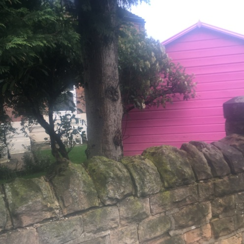 Pink Shed 2